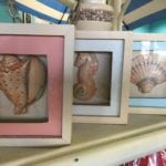 Coastal Shadow Boxes • Set of three coastal shadowboxes add a little color and interest anywhere. Perfect for a bathroom, sun porch or even a nursery.