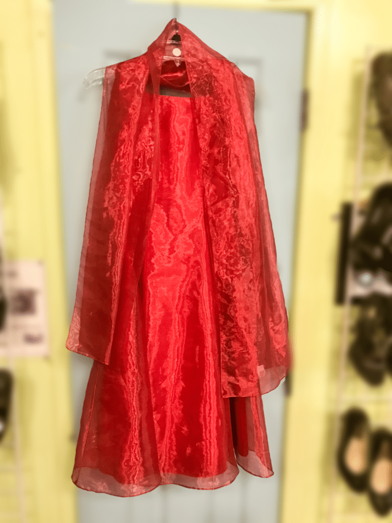 Jessica McClintock Red Gown • This beautiful Jessica McClintock red evening gown will make any woman feel like a princess! This dress is a size 8.