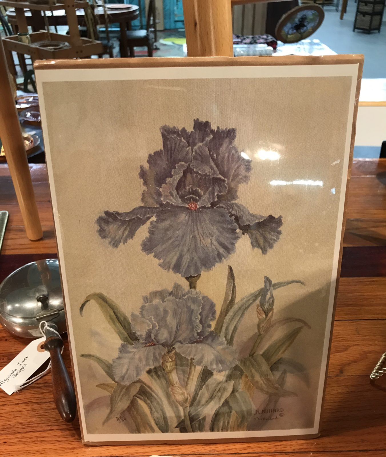 Iris print-unframed • Lovely print just waiting for the right frame to make it work for you l!