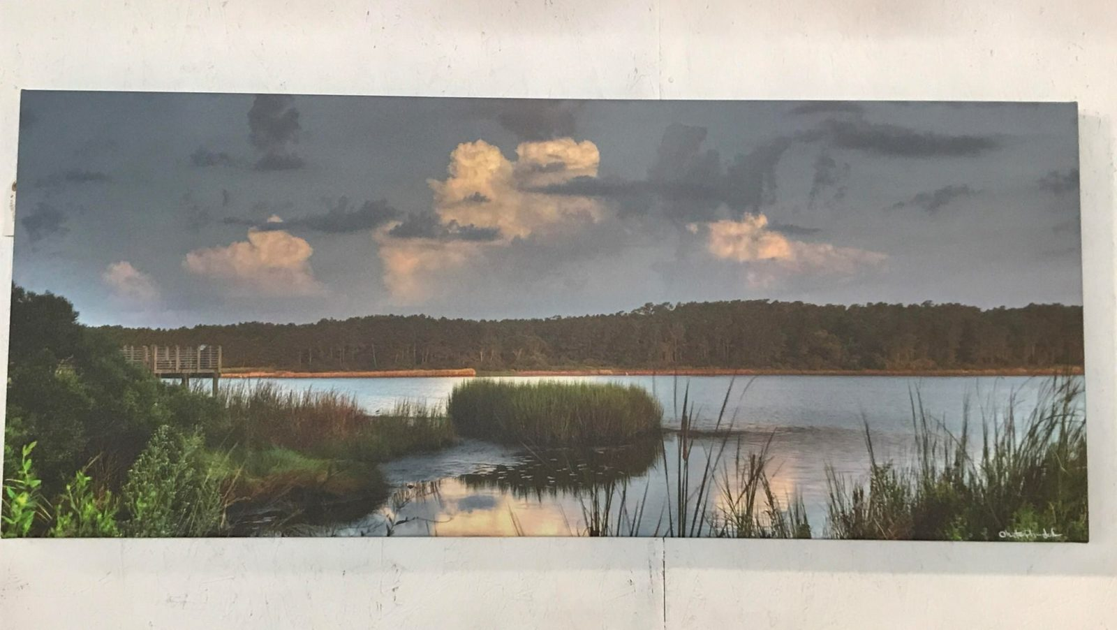 Marsh photo print on canvas • This photo doesn't do this beautiful picture justice! The colors are fabulous! Make a statement in your coastal decor with this wonderful piece!